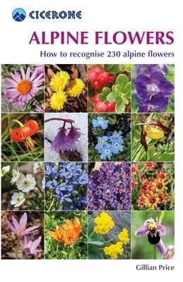 alpineflowers