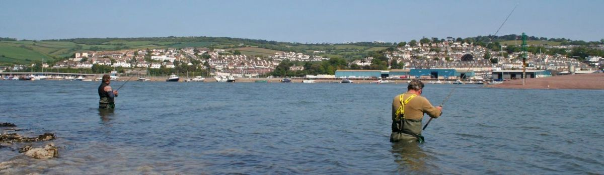 Bass Fishing in Teignmouth