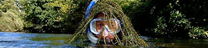 SnorkellingDart