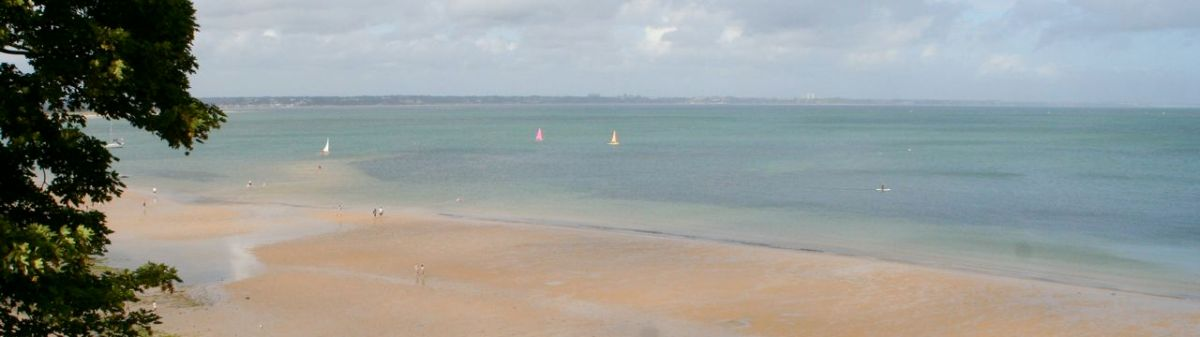 Snorkelling at Studland Bay in Dorset