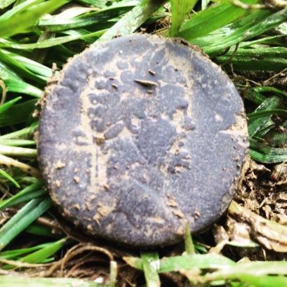 Septimius Severus AE Sestertius 193-211 A.D